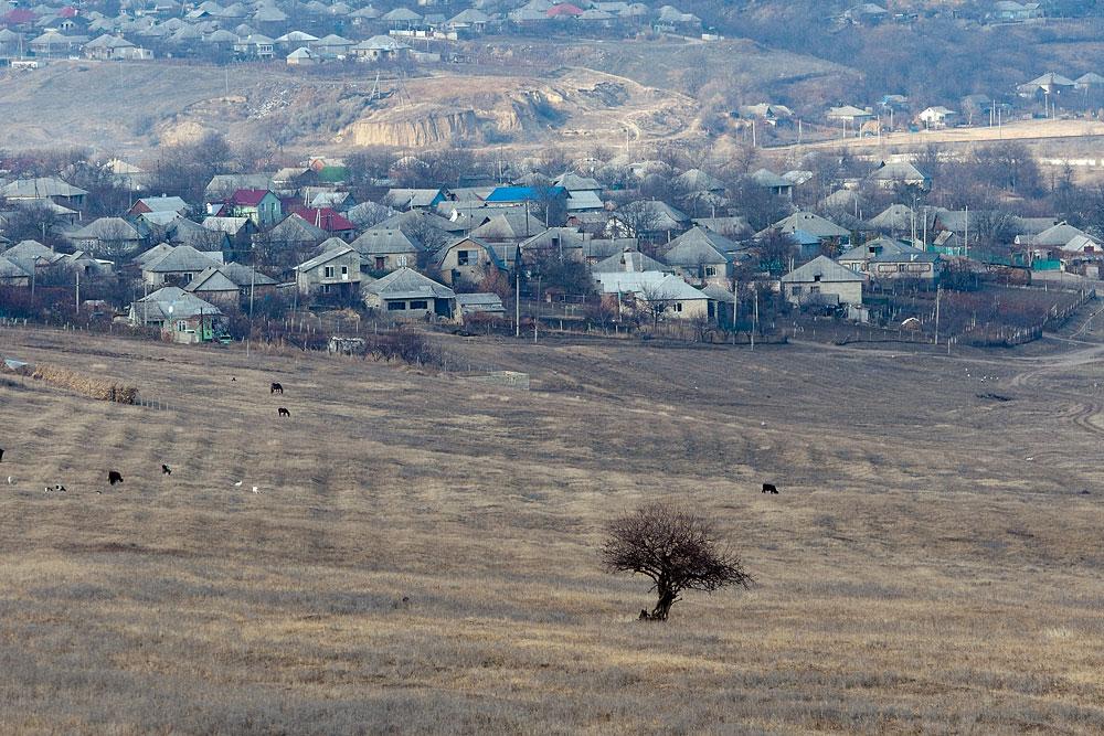 Поля у села Бульбоака Новоаненского района Республики Молдова (3)