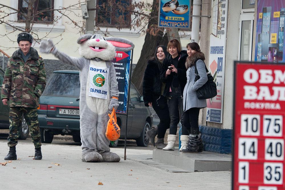 Бешеный заяц