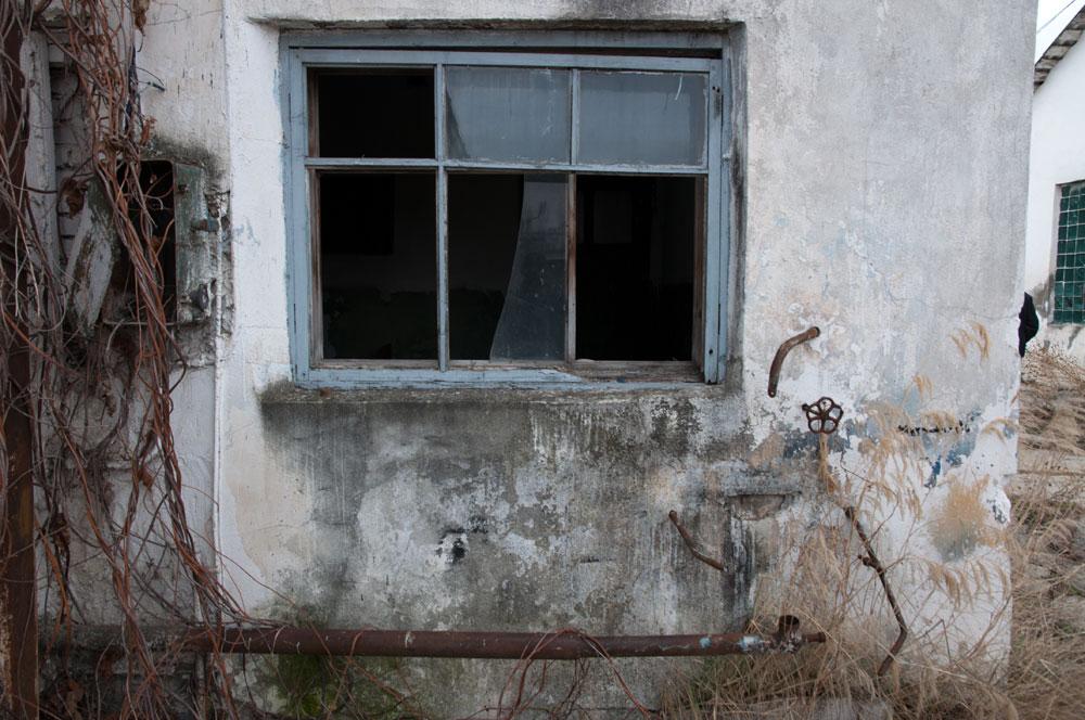 Приднестровье, Рыбница - прогулка по территории сахспиркомбината (19)