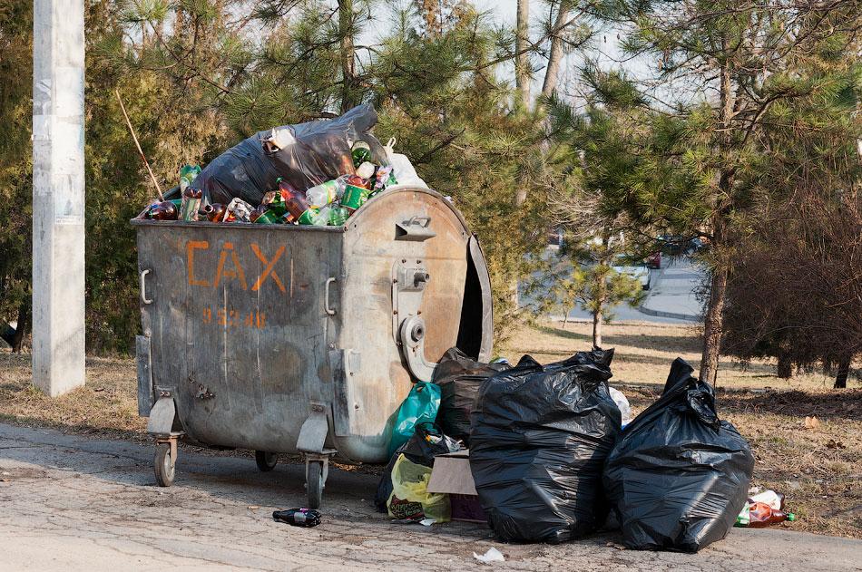 Свалка мусора на набережной Тирасполя (1)