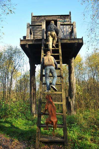Национальный парк Угра в Калужской области (7)