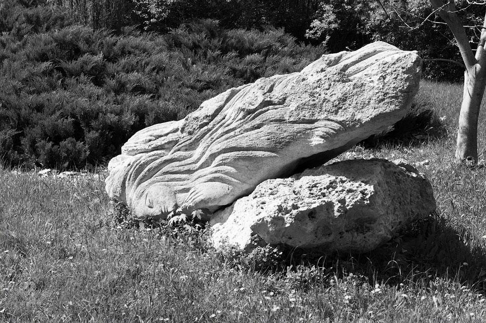 Поездка на север Приднестровья (Тирасполь - Рыбница - Рашков - Каменка - Строенцы) (14)
