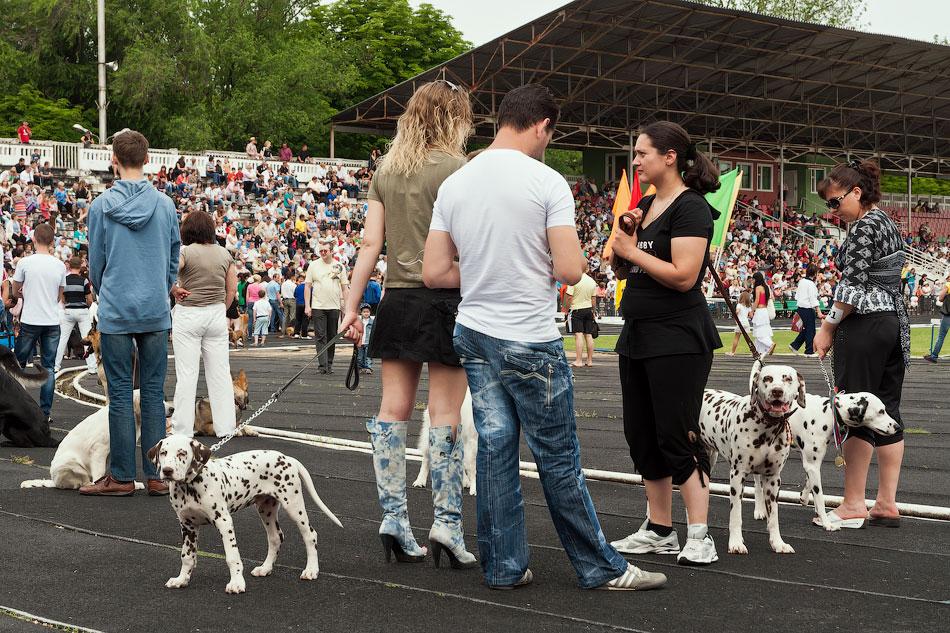 Международная выставка собак в Тирасполе, 27 мая 2012 года (6)