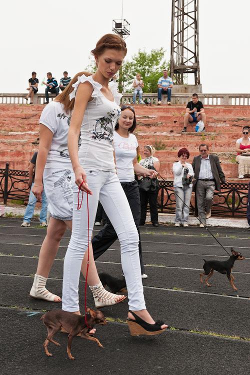 Международная выставка собак в Тирасполе, 27 мая 2012 года (10)