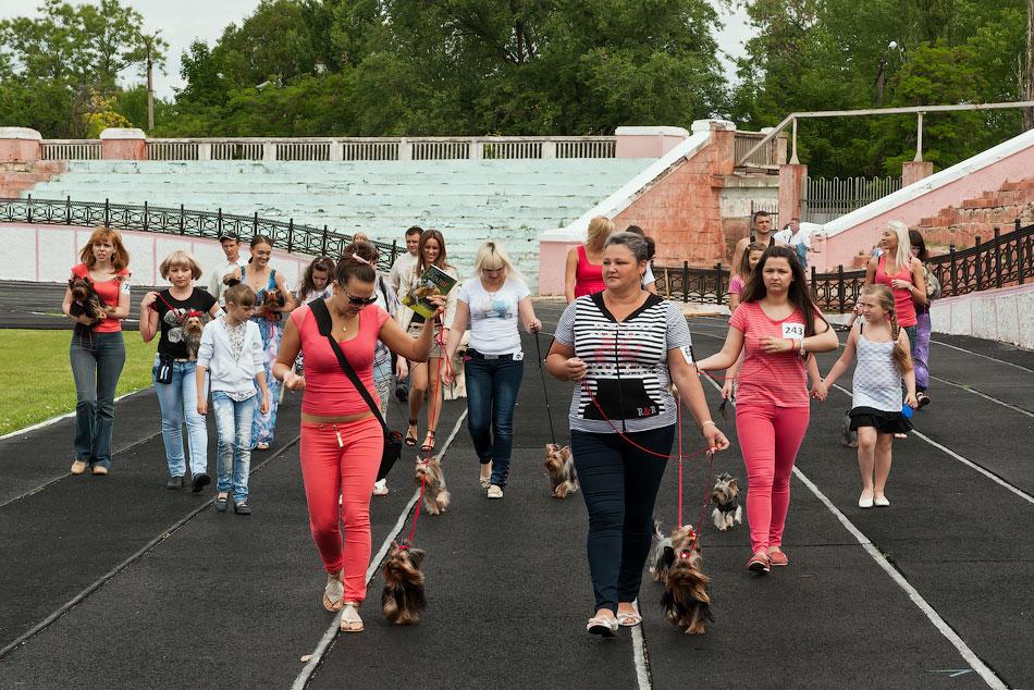 Международная выставка собак в Тирасполе, 27 мая 2012 года (17)