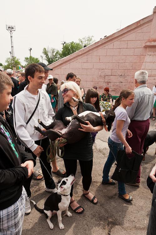Международная выставка собак в Тирасполе, 27 мая 2012 года (23)