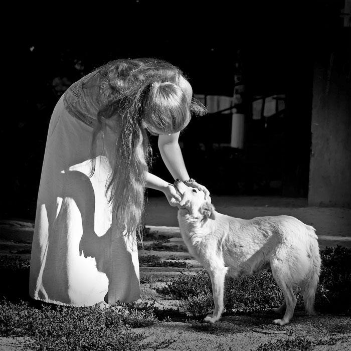 Животный мир Тирасполя: кошки и собаки (36)
