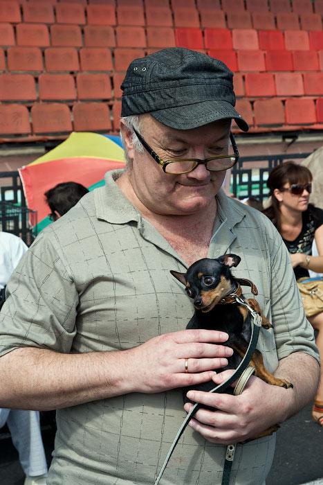 Выставка собак в Тирасполе - 11-12 августа 2012 года (13)