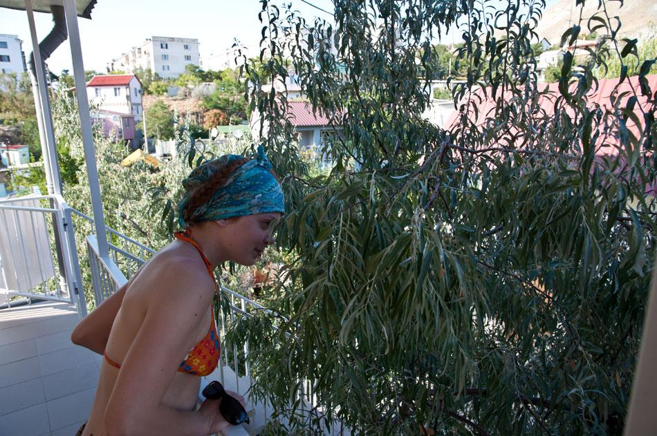 Море, Крым, Орджоникидзе - день первый (7)