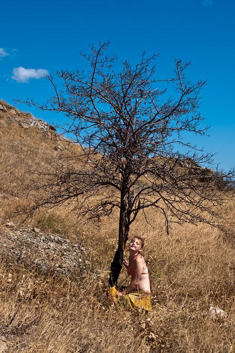 Дорога Коктебель - Тихая бухта - Орджоникидзе - 2012 год (45)