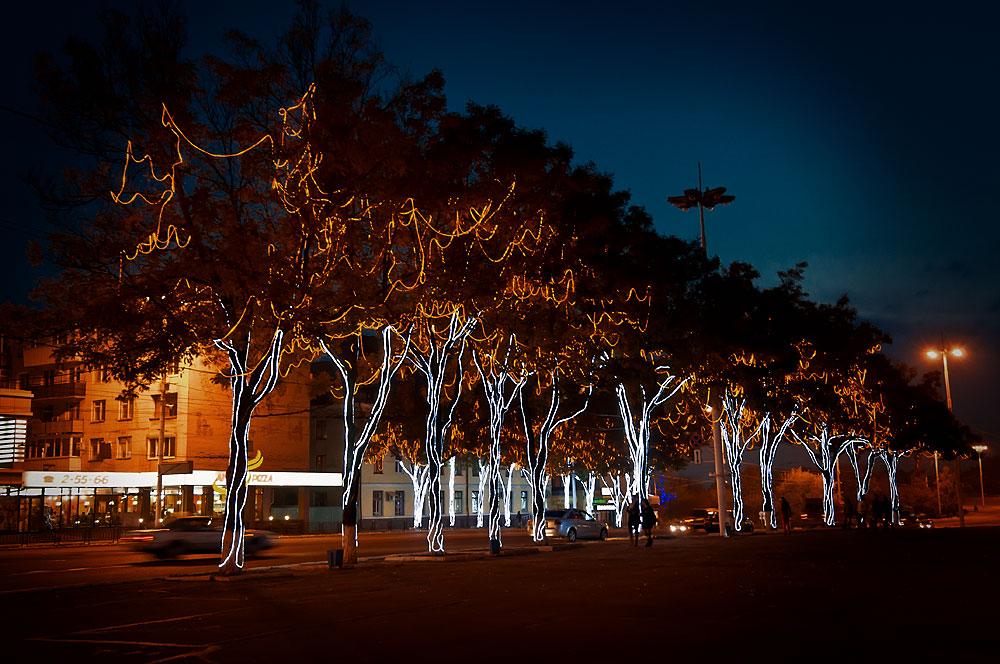 Иллюминация на деревьях в центре Тирасполя