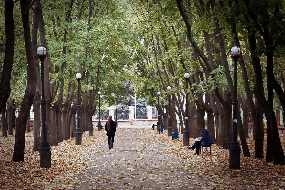 Осенние листья в городском парке Тирасполя