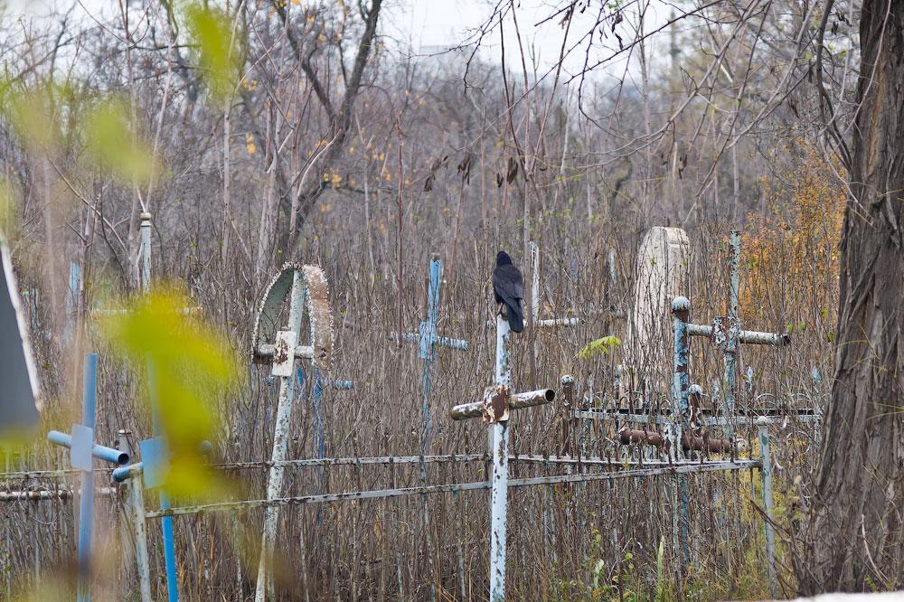 Осеннее путешествие на север Приднестровья (Рыбница - Рашково - Монастырь - Строенцы) (14)