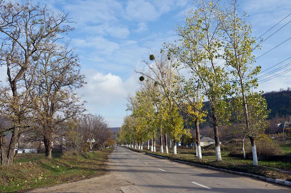 Осеннее путешествие на север Приднестровья (Рыбница - Рашково - Монастырь - Строенцы) (28)