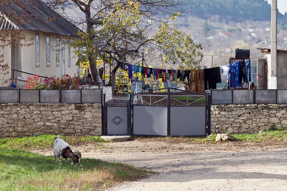 Осеннее путешествие на север Приднестровья (Рыбница - Рашково - Монастырь - Строенцы) (45)