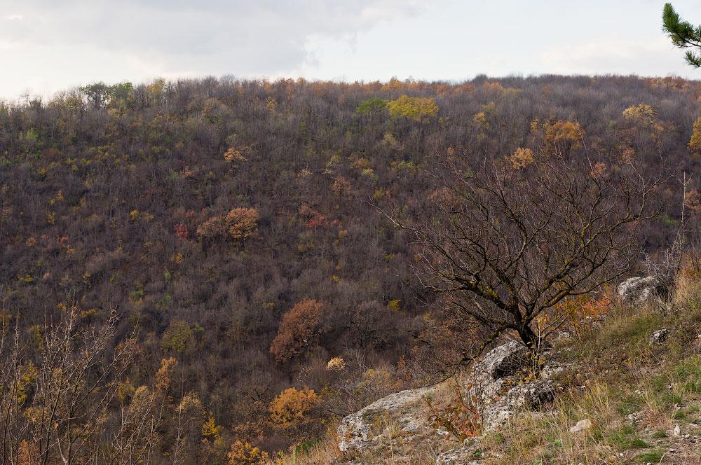 Осеннее путешествие на север Приднестровья (Рыбница - Рашково - Монастырь - Строенцы) (63)