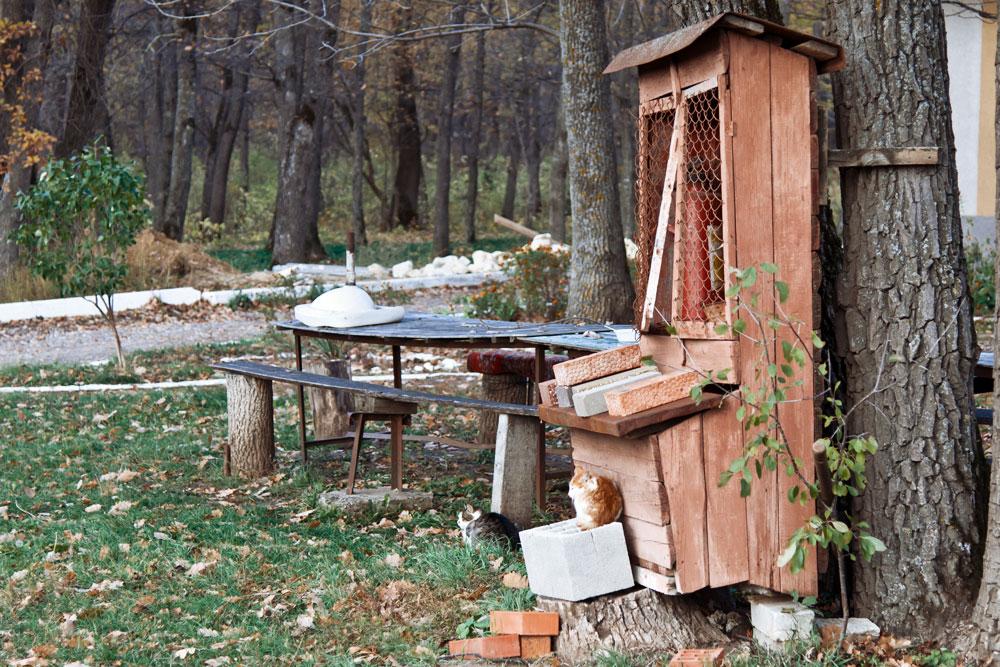 Осеннее путешествие на север Приднестровья (Рыбница - Рашково - Монастырь - Строенцы) (68)