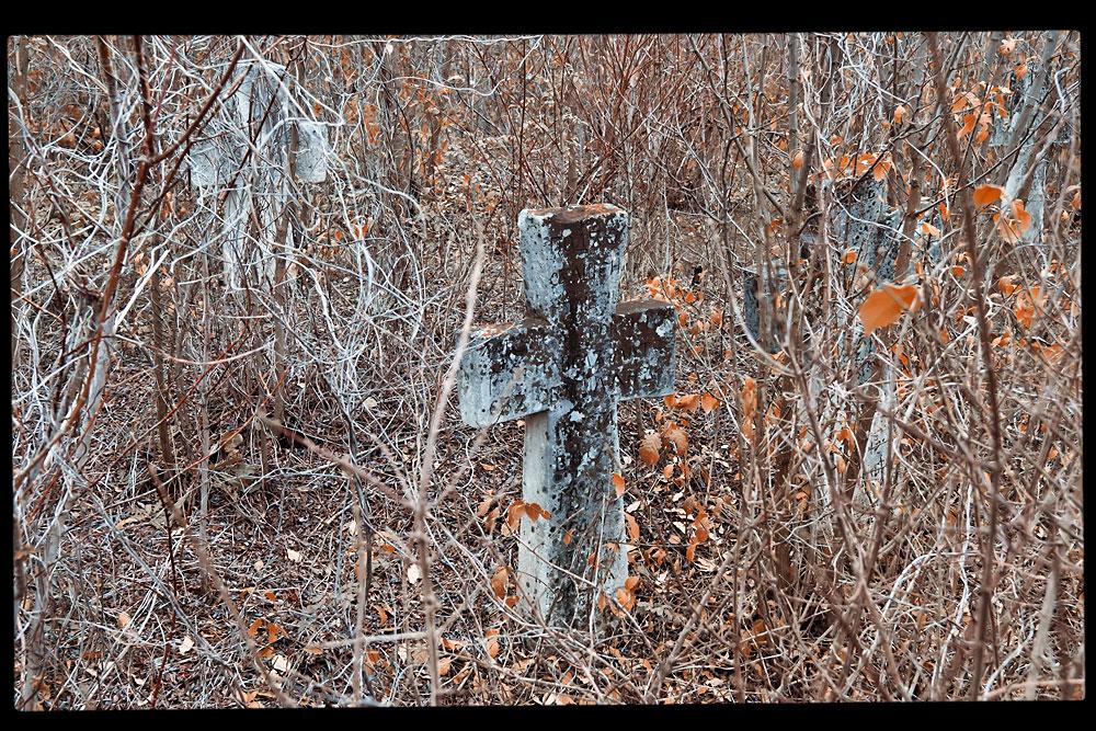 Старое кладбище на окраине села Плоть (1)