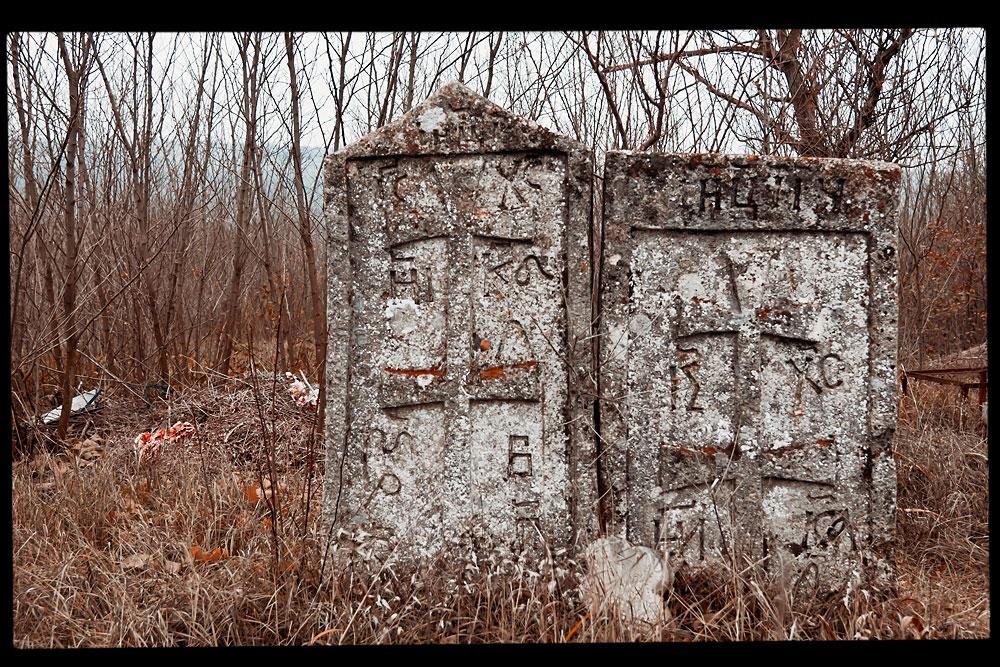 Старое кладбище на окраине села Плоть (4)