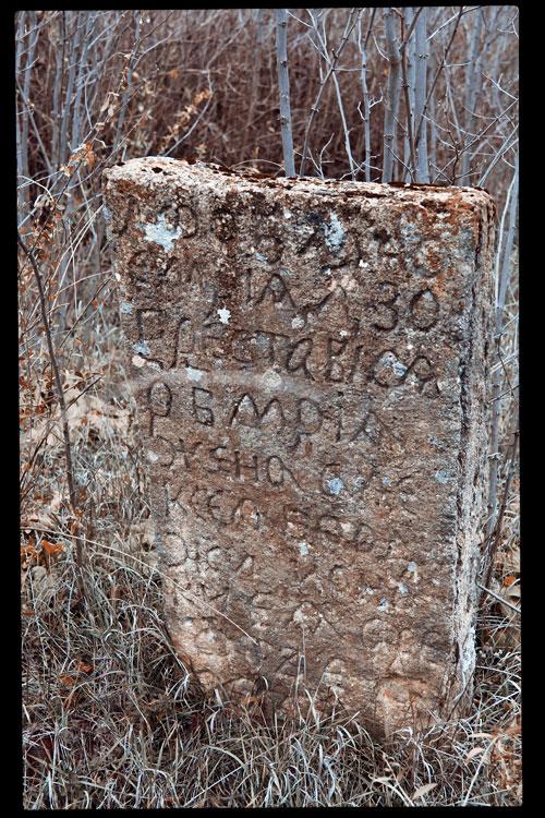 Старое кладбище на окраине села Плоть (7)