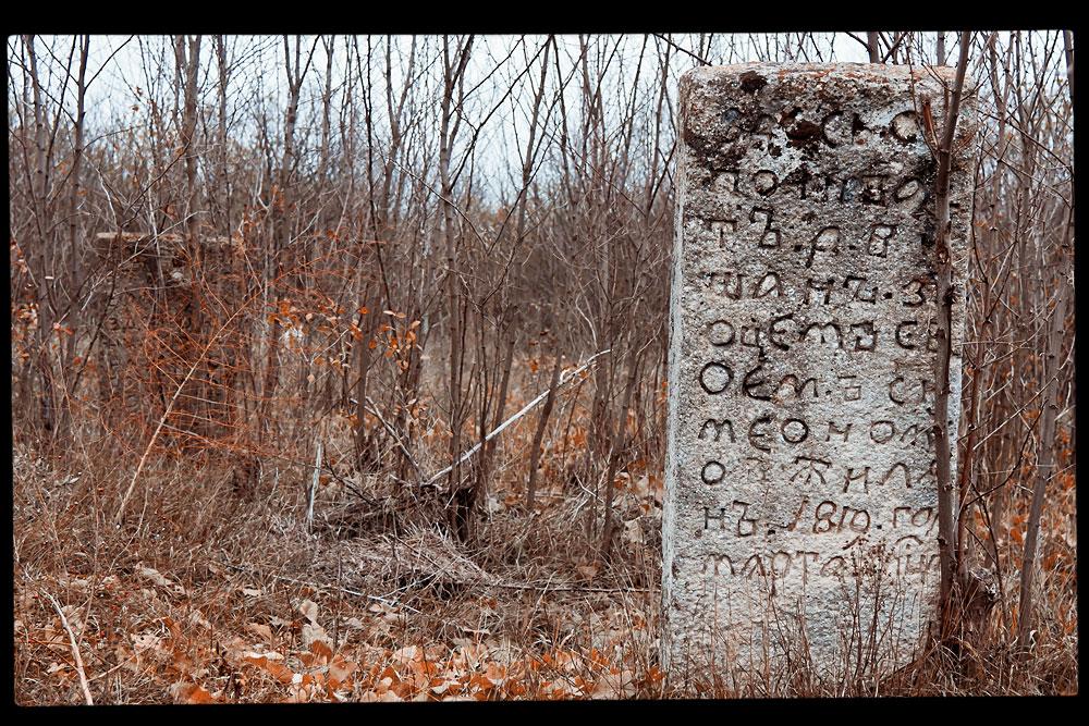 Старое кладбище на окраине села Плоть (10)
