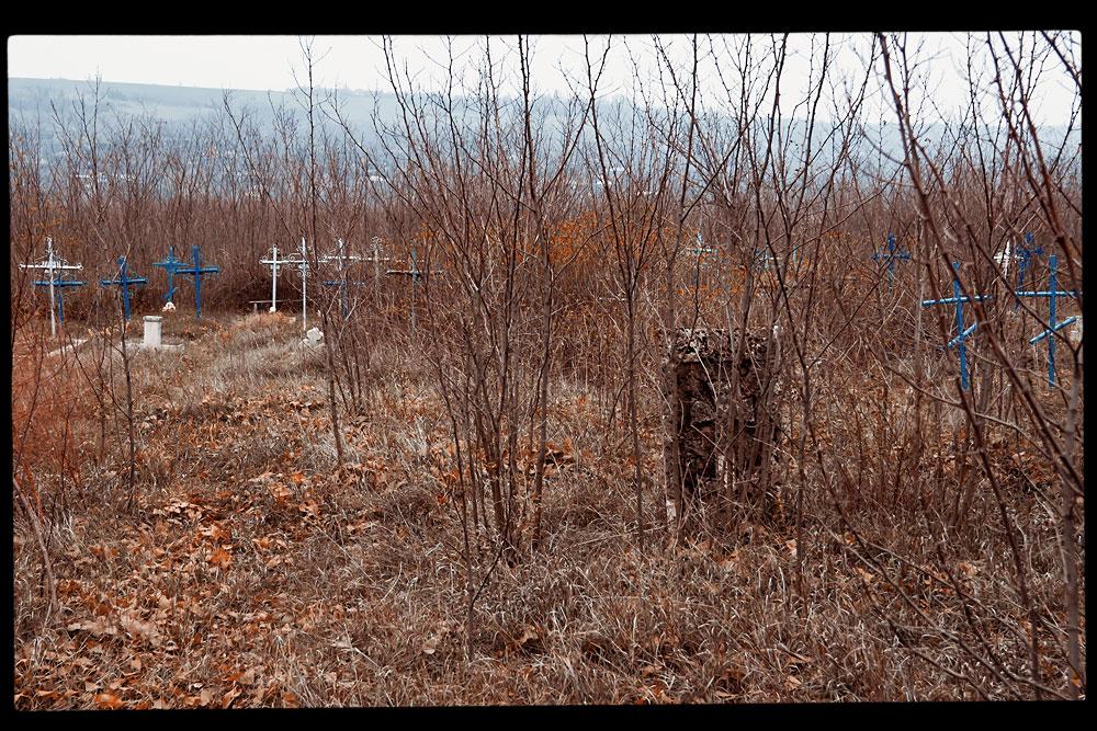 Старое кладбище на окраине села Плоть (11)