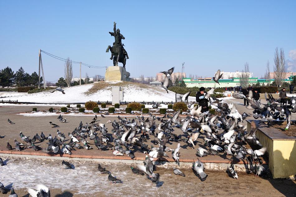 Голуби на центральной площади города Тирасполь Приднестровье (2)