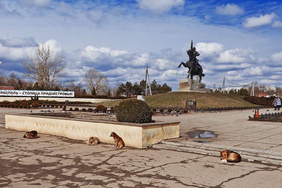 Собаки в Тирасполе ждут весны и тепла