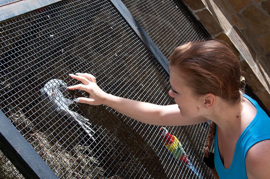 """Зоопарк """"Сказка"""" - Крым, Ялта, 24 мая 2013 года (13)"""