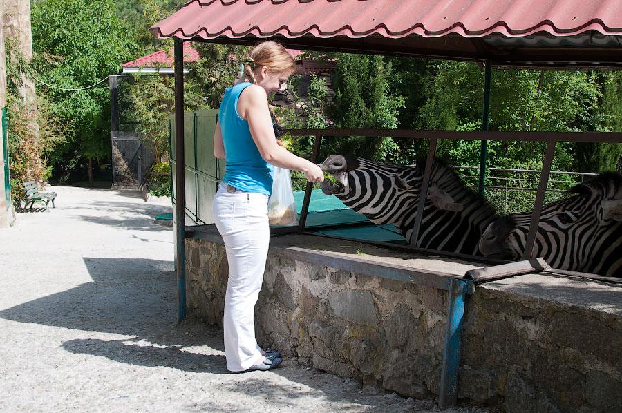 """Зоопарк """"Сказка"""" - Крым, Ялта, 24 мая 2013 года (14)"""