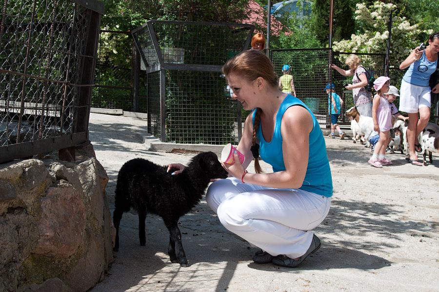 """Зоопарк """"Сказка"""" - Крым, Ялта, 24 мая 2013 года (27)"""