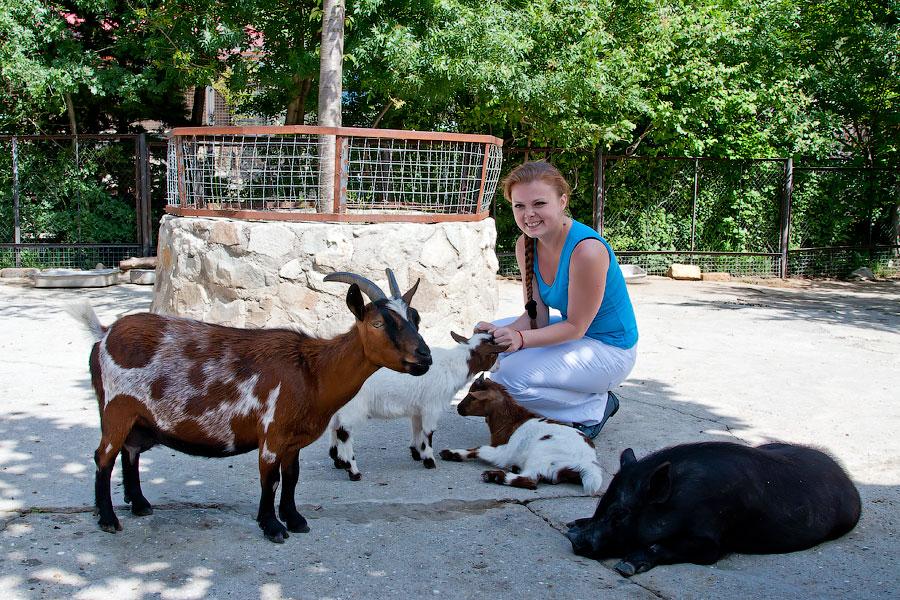 """Зоопарк """"Сказка"""" - Крым, Ялта, 24 мая 2013 года (29)"""