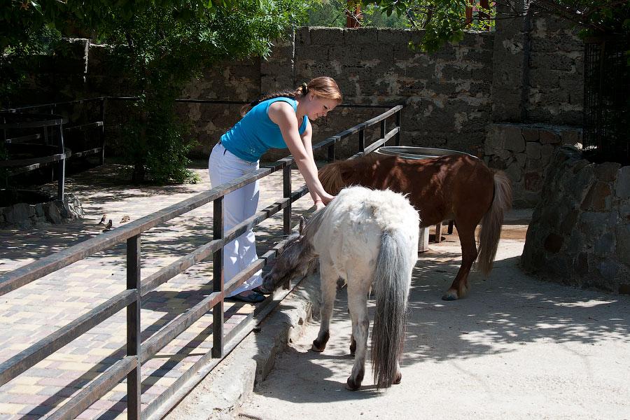 """Зоопарк """"Сказка"""" - Крым, Ялта, 24 мая 2013 года (30)"""