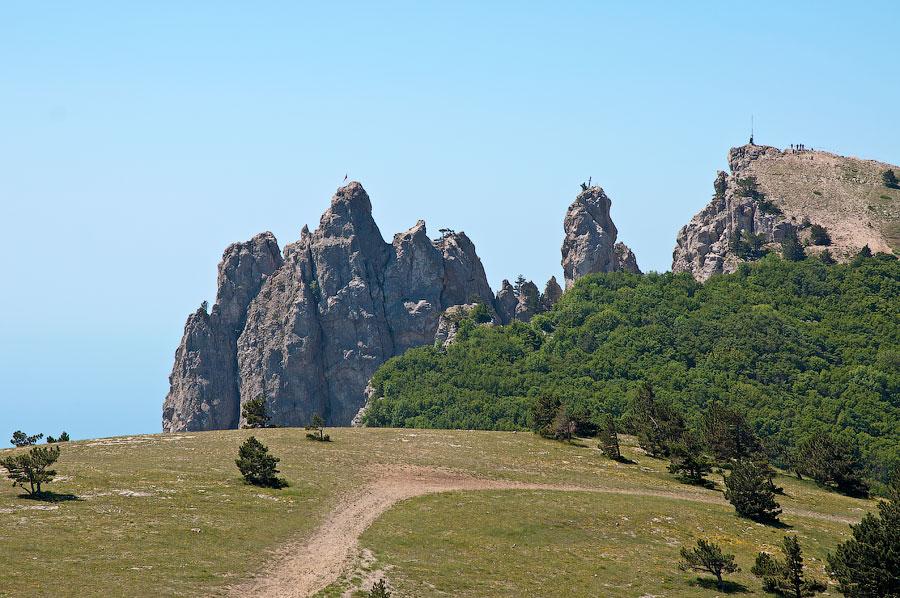 На вершине горы Ай-Петри (5)