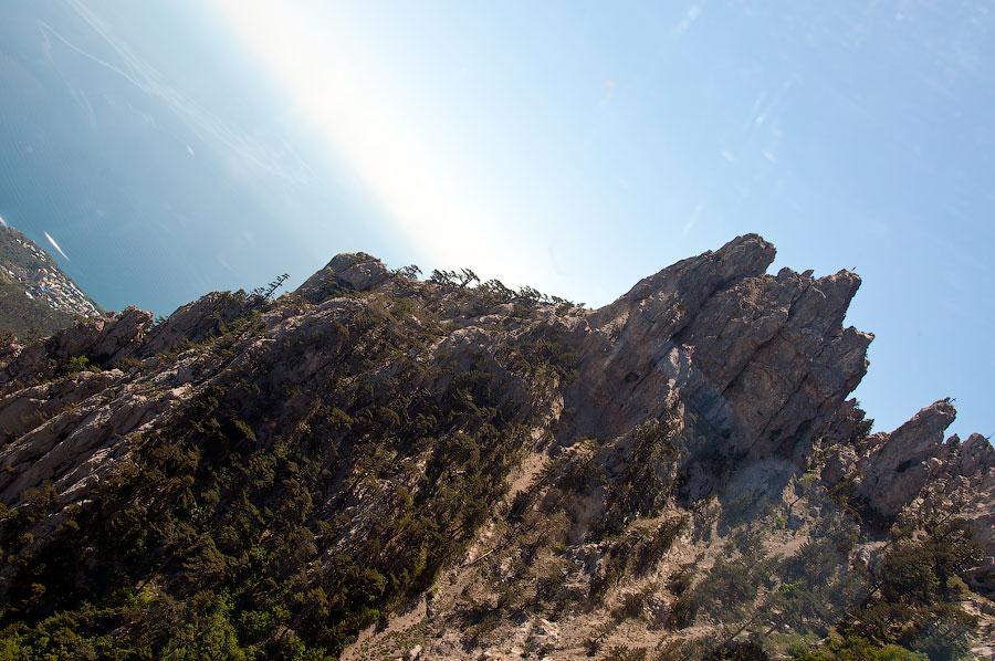 На вершине горы Ай-Петри (13)