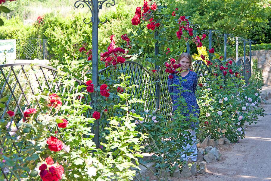 Никитский ботанический сад (7)
