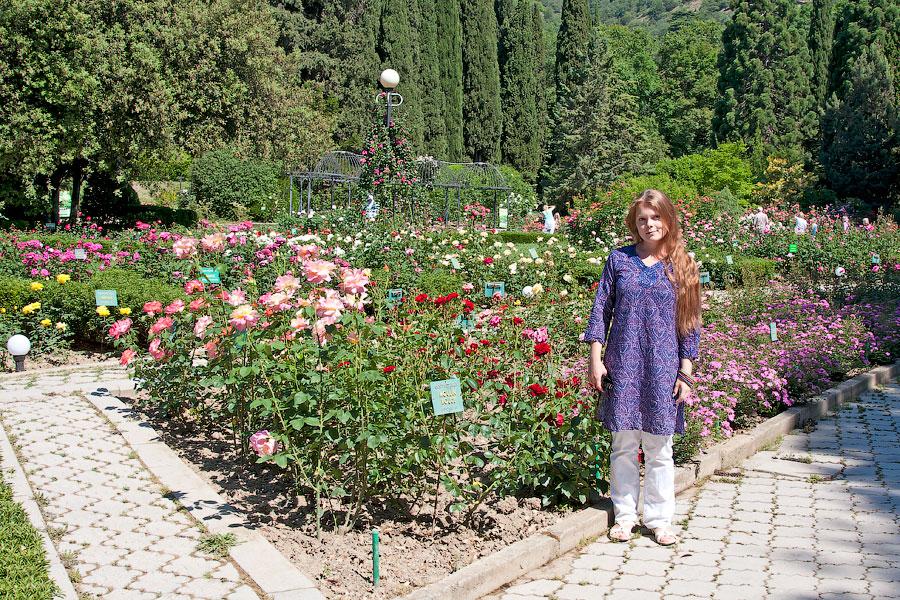 Никитский ботанический сад (9)