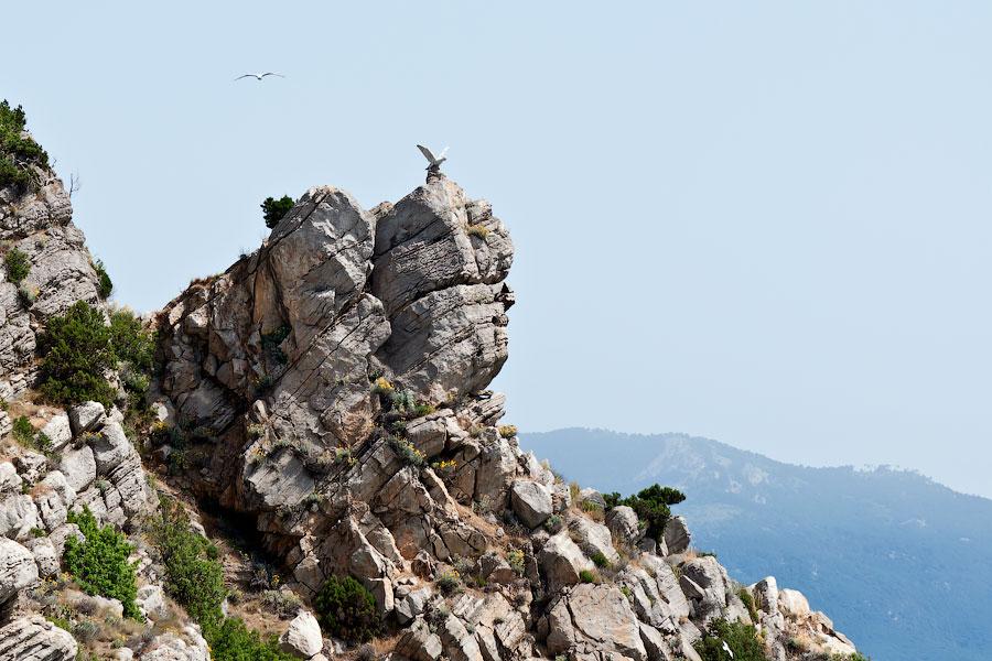 Морская прогулка от Ялты к Ласточкиному гнезду (40)