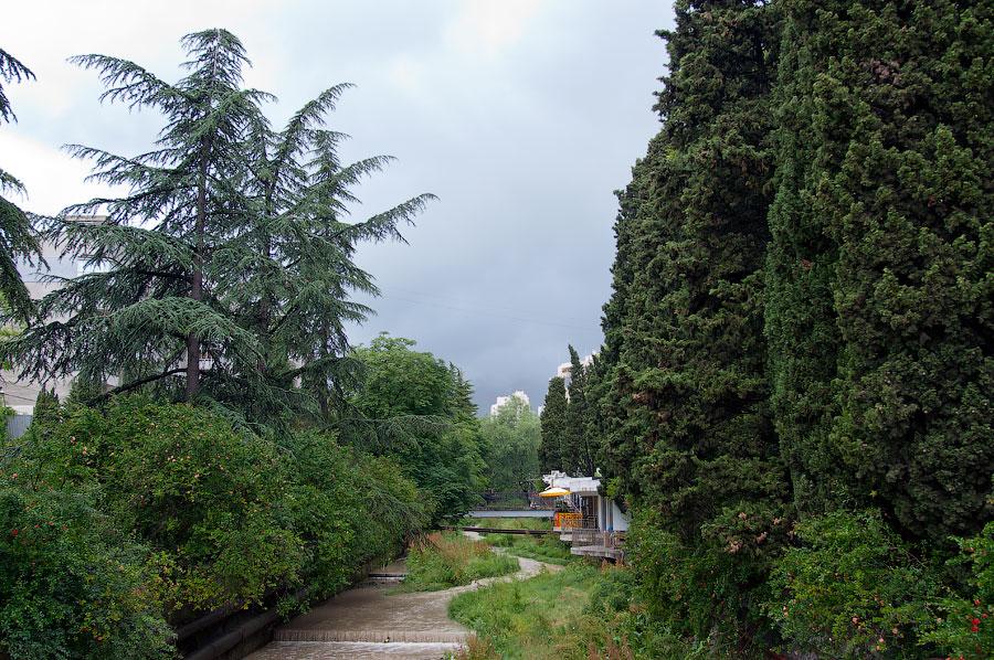 Дождливый день в Ялте (9)