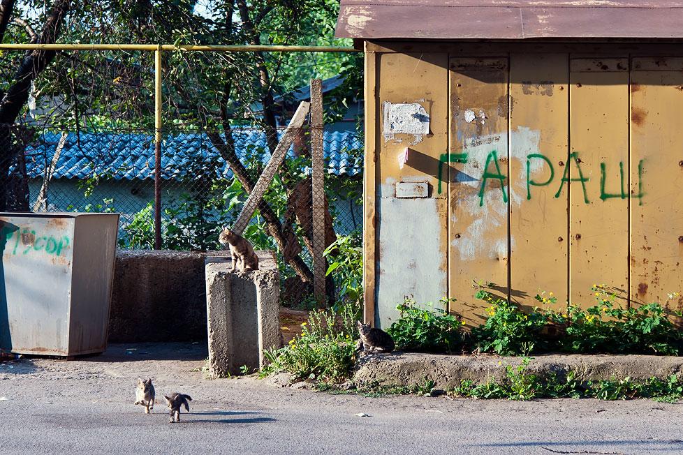 Городские зарисовки - Тирасполь