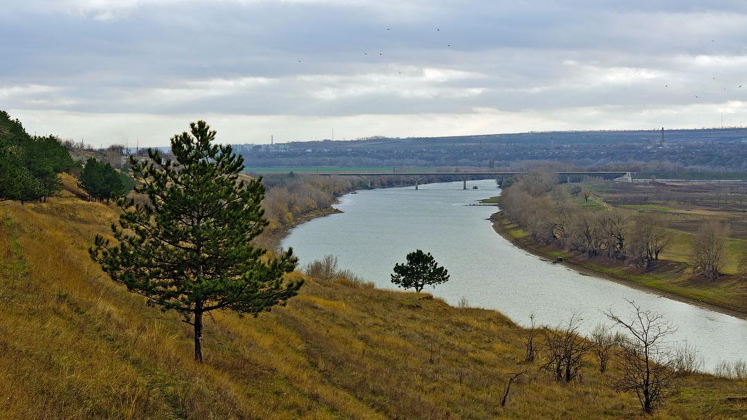 Село Бычок, река Днестр (11)